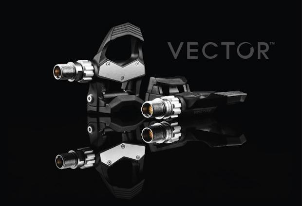 VectorGiftBagCard